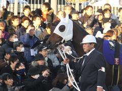 20161229 大井10R 東京大賞典(G1) サンドプラチナ 08