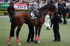 20191124 東京10R ウェルカムS (3勝) オウケンブラック 11