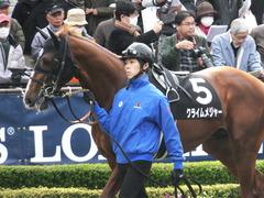 20161127 東京7R ベゴニア賞 クライムメジャー 03