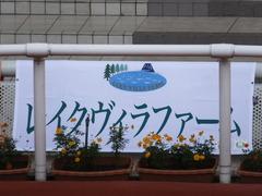 20161002 阪神8R (500) テイケイラピッド 01