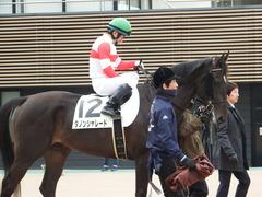 20171224 中山5R 2歳メイクデビュー ダノンシャレード 14