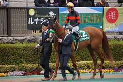 20200215 東京11R クイーンC(G3) 3歳牝馬OP ホウオウピースフル 15