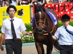 20160605 東京11R 安田記念(G1) モーリス 10