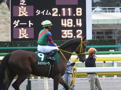 20151031 東京11R アルテミスS(G3) テイケイレーヴ 13