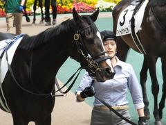 20160514 東京5R 3歳牝馬未勝利 ツボミ 10
