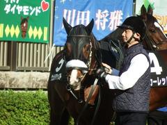 20181125 東京8R オリエンタル賞(1000) ロジスカーレット 16