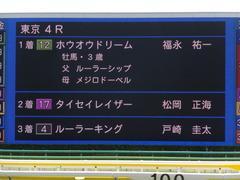 20170604 東京4R 3歳未勝利 ホウオウドリーム 31