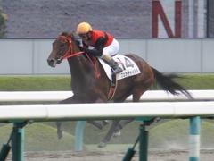 20170910 阪神3R 3歳未勝利 フェアチャイルド 33