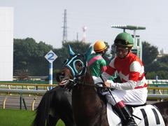 20141011 東京7R トレジャーマップ 05