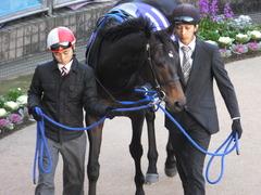 20131222 有馬記念 ラブイズブーシェ 03