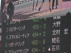 20150131 東京4R 3歳未勝利 ロジダーリング 01