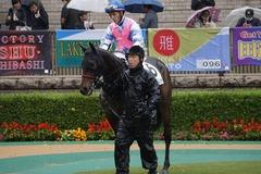 20191123 東京3R 2歳未勝利 ミスミルドレッド 14