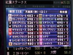 20171029 東京11R 天皇賞秋 ミッキーロケット 01