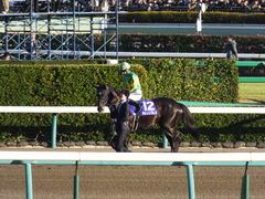 20161225 中山12R 有馬記念(G1) サトノノブレス 07