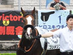20170625 東京1R 3歳牝馬未勝利 プンメリン 15