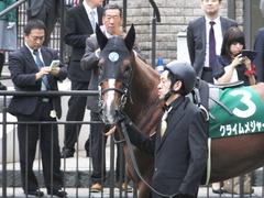 20161008 東京11R サウジアラビアRC(G3) クライムメジャー 10