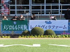 20141227 中山6R 2歳メイクデビュー マッサビエル 02