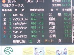 20190105 中山9R 招福S(1600) オウケンブラック 01