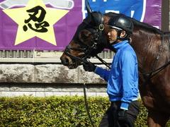 20180217 東京4R 4歳上障害未勝利 アークアーセナル 05