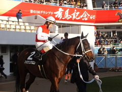 20161224 中山11R 師走S(OP) ショウナンアポロン 16