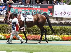 20170604 東京4R 3歳未勝利 ホウオウドリーム 09