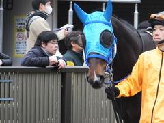 20160130 東京10R クロッカスS モーゼス 04