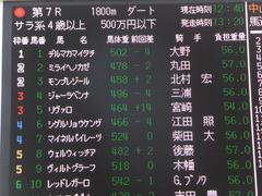 20140117 中山競馬場 ヴィルトグラーフ 01