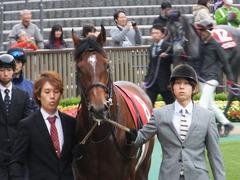 20131109 東京 モーリス 04