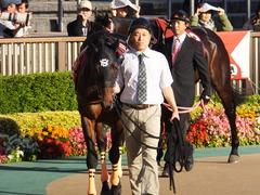 20161105 東京11R 京王杯2歳S(G2) コウソクストレート 03