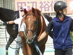 20181006 東京3R 2歳未勝利 ヤップヤップヤップ 11