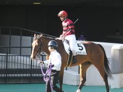 20161120 東京1R 2歳未勝利 メガポリゴン 12