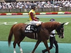 20150627 東京11R 夏至S ランドマーキュリー 10