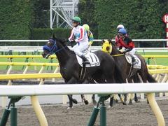 20161010 東京6R (500) モーゼス 19