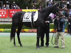 20151031 東京5R 2歳メイクデビュー ラルゴランド 10