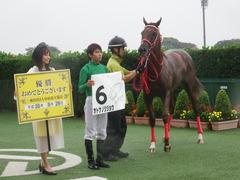 20180929 中山5R 2歳牝馬メイクデビュー オトナノジジョウ 32