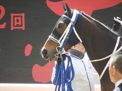 20180331 阪神3R 3歳未勝利 テンノカガヤキ 14