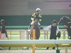 20181006 東京1R 2歳未勝利 サノノドン 16