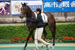 20191019 東京2R 2歳牝馬未勝利 バイカル 07