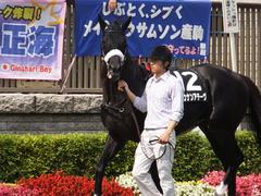 20150628 東京11R パラダイスS ショウナンアチーヴ 04