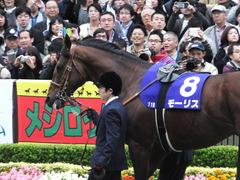 20161030 東京11R 天皇賞・秋(G1) モーリス 05