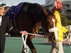 20170215 大井11R 金盃(S2) ユーロビート 16