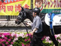 20150426 東京6R 3歳500万下 ファインライナー 05