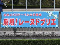 20171118 東京10R ユートピアS(牝1600) レーヌドブリエ 01