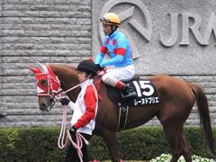 20151123 東京10R 鷹巣山特別 レーヌドブリエ 22