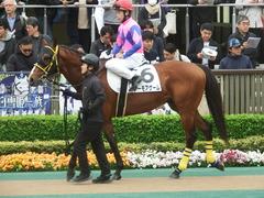 20190427 東京12R (1000) ノーモアゲーム 16
