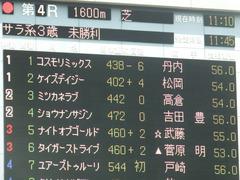20190504 東京4R 3歳未勝利 ショウナンサジン 01