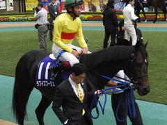 20141102 東京11R天皇賞(秋) ラブイズブーシェ 05