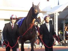 20151229 大井10R 東京大賞典 (G1) ユーロビート 06