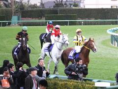 20151227 中山10R 有馬記念(G1) ゴールドシップ 22