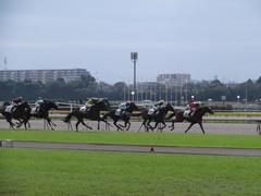 20121014 リメンバーメジロ初勝利 02